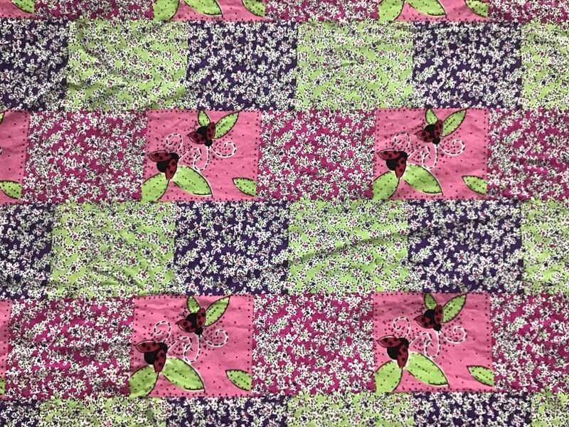 Fabric: Ladybug Fun / Cotton