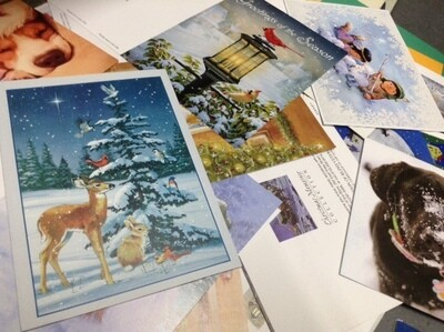 Mixed Bag of Christmas Cards For Those Who Are Not Picky