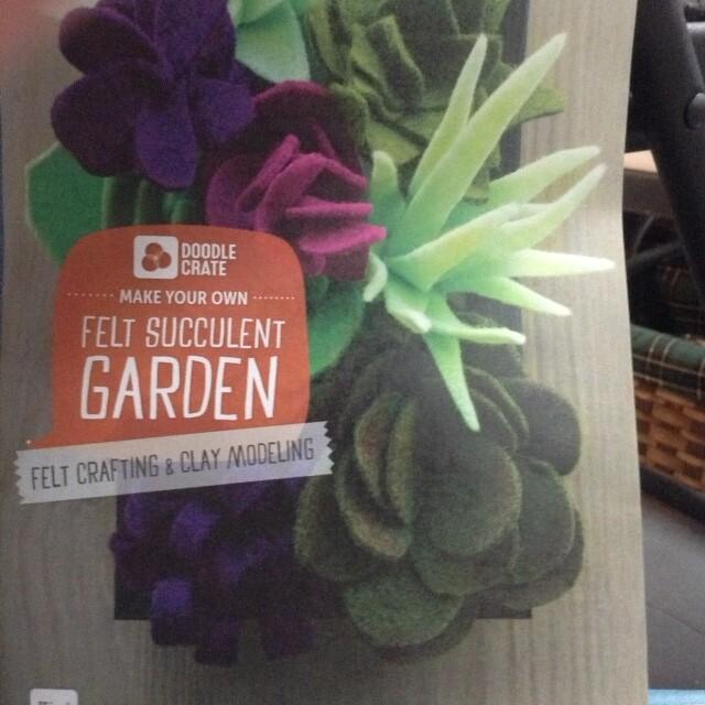 Felt Succulent Garden Doodle Crate