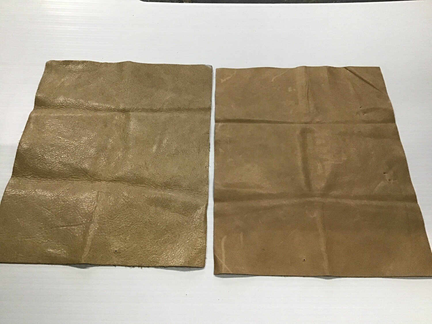 Leather: 2 Sample Pieces