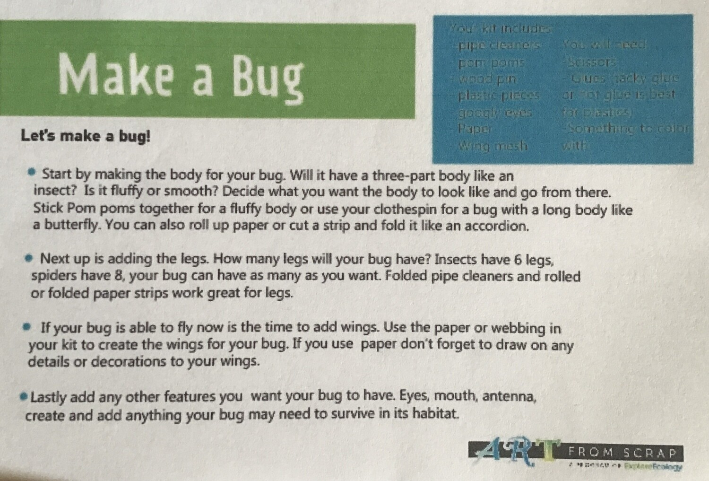 Kit: Let's Make A Bug!