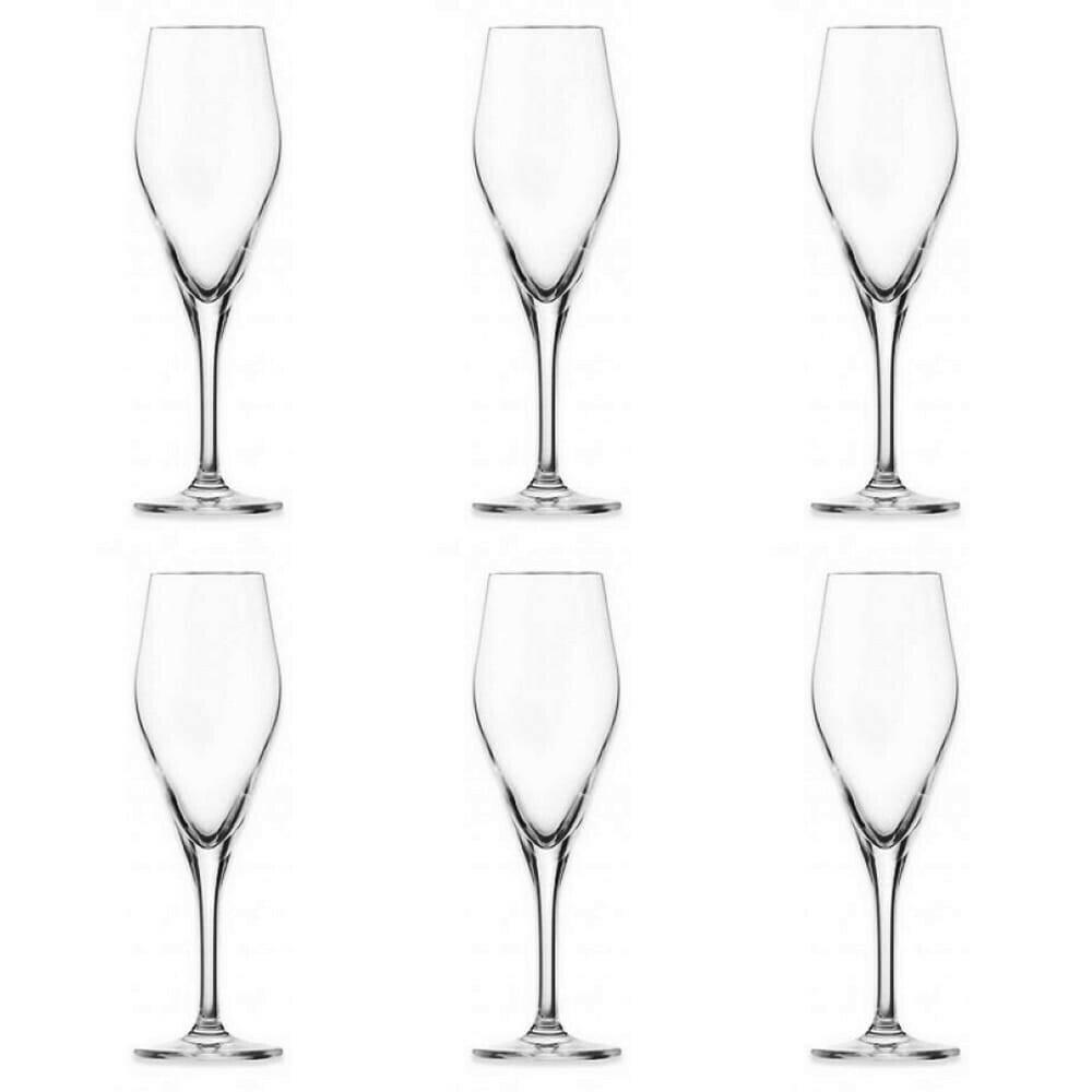 SCHOTT ZWIESEL - 1 x Audience Champagne Glasses  250ml Code:116486
