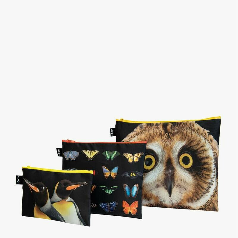LOQI - National Geographic Zip Pockets - Owl  Butterflies  Penguins