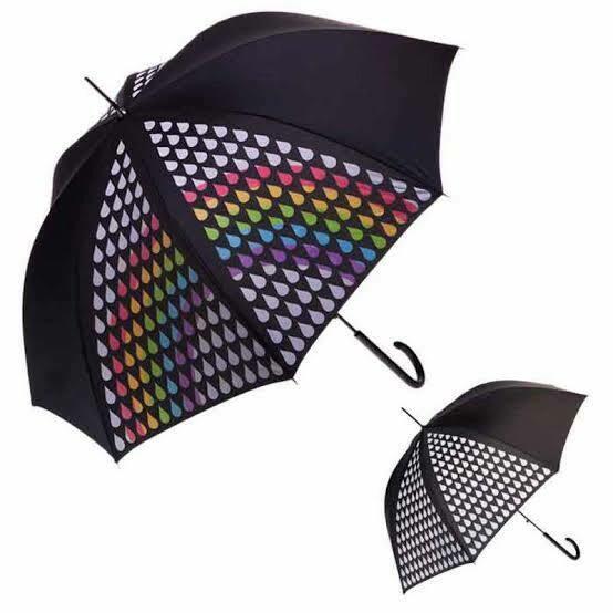 CLIFTON AUSTRALIA - Handled (90cm Approx)/ Foldable(28cm) Umbrellas
