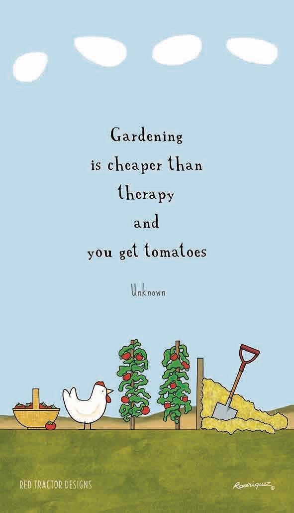 RODRIGUEZ Tea Towel - Red Tractor Designs - Garden Therapy