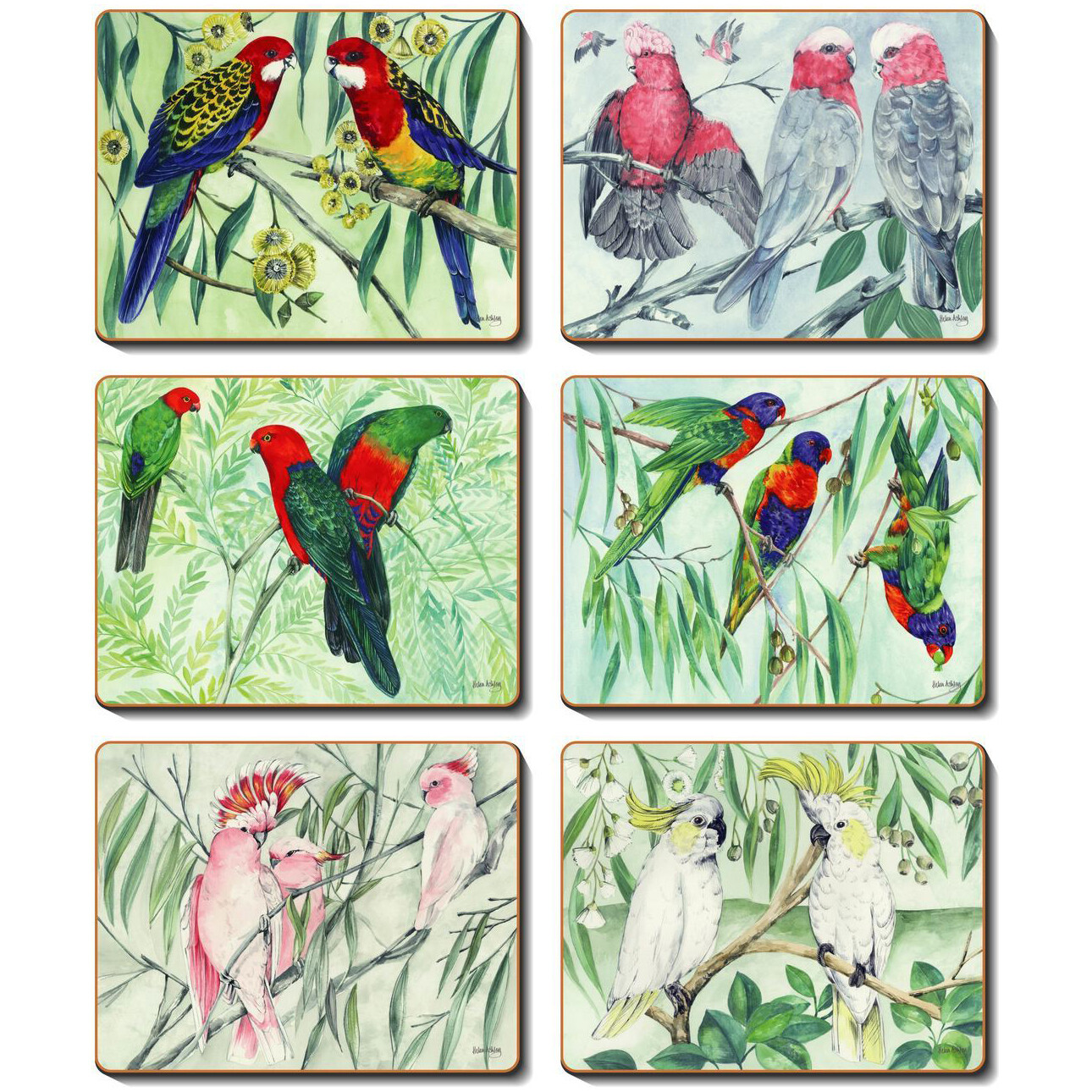 CINNAMON - 6 Cork backed placemats - Australian Parrots
