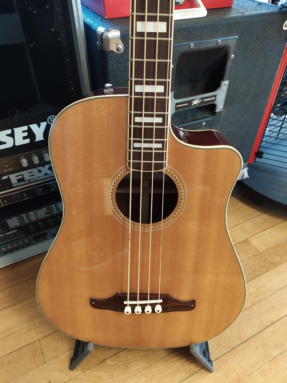 Fender Kingman Acoustic Bass
