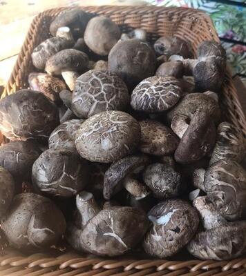 Shitake Mushrooms 200g