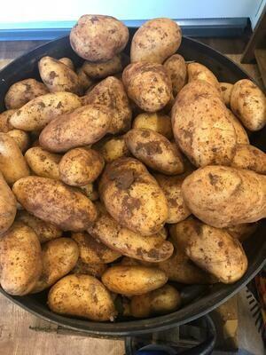 Cyprus Potato 1kg