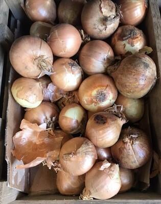 Onions White 1kg