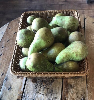 Pear conference Each