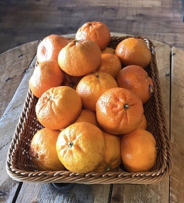 Clementines Each