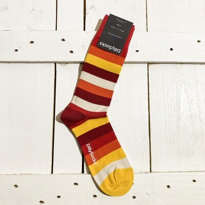 Dilly Socks – Lava Line