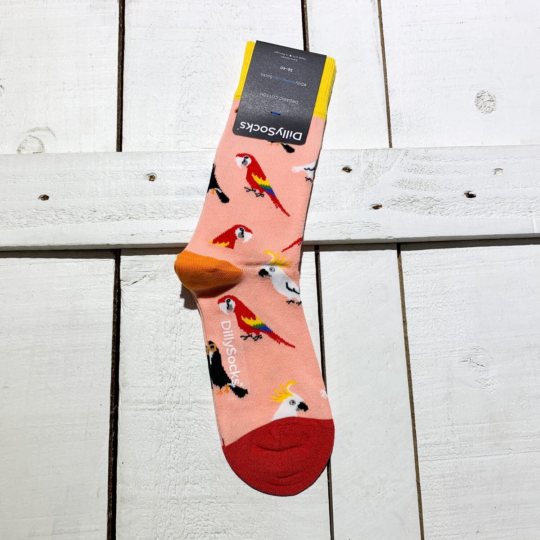Dilly Socks – Blush Aviary