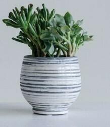 Grey & White Stripe Planter