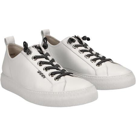 Elastic Lace Sneaker - White