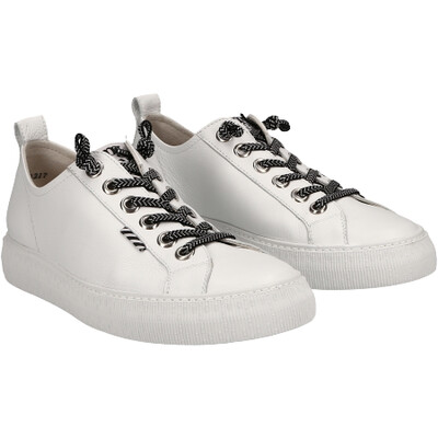 Elastic Lace Sneaker - White