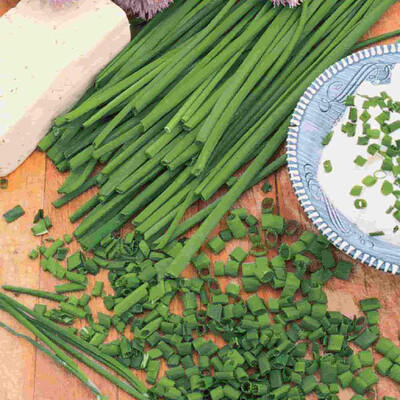 Chive Herbs