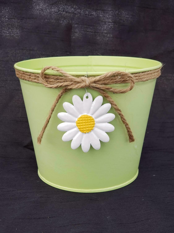 SM Green Daisy Pot