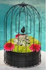 Bird Cage Hanging Basket