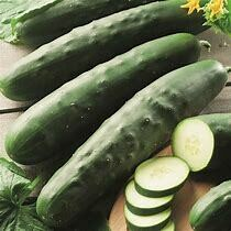 Cucumber Maketmore Organic