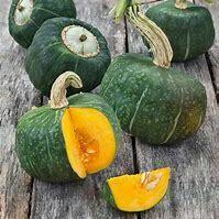 Squash Butternut Organic