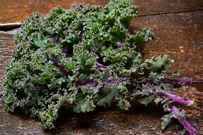 Kale Red and White Russian