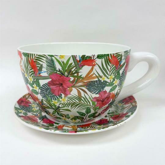 Tea Cup Pot Hibiscus - Various Sizes