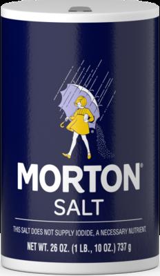MORTON PLAIN SALT 737G