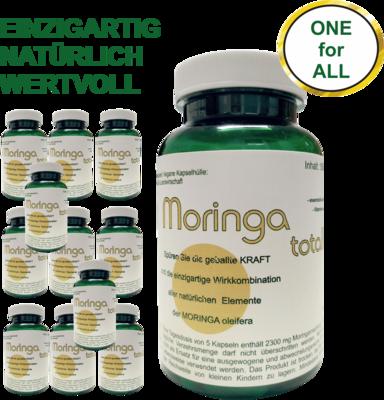 12 Monate - Moringa total