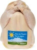 Optigal poulet GMNF le kg