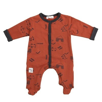 Babybol Boys Babygrow (20817)