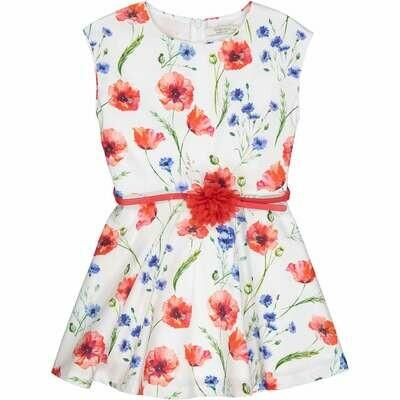 Try Beyond Girls Dress (999 85584)