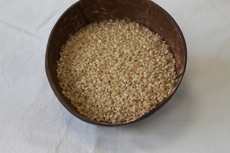 Organic Short Grain Brown Rice 250g
