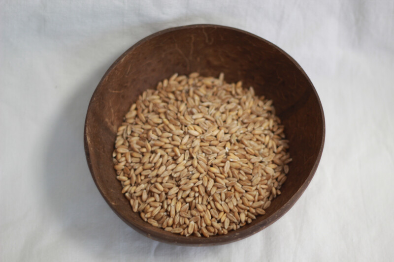 Organic Spelt Grain 500G