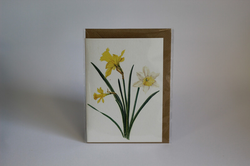 Irish Made Floral Cards