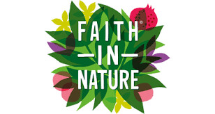 Faith In Nature Body Washes  (in store only)