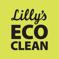Lilly's Eco Clean Cleaning Products (in store only)