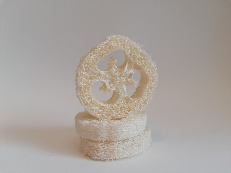 Loofah Soap Rest