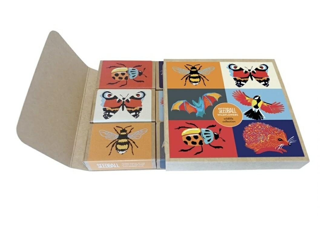 Seedball Wildlife Collection Kit