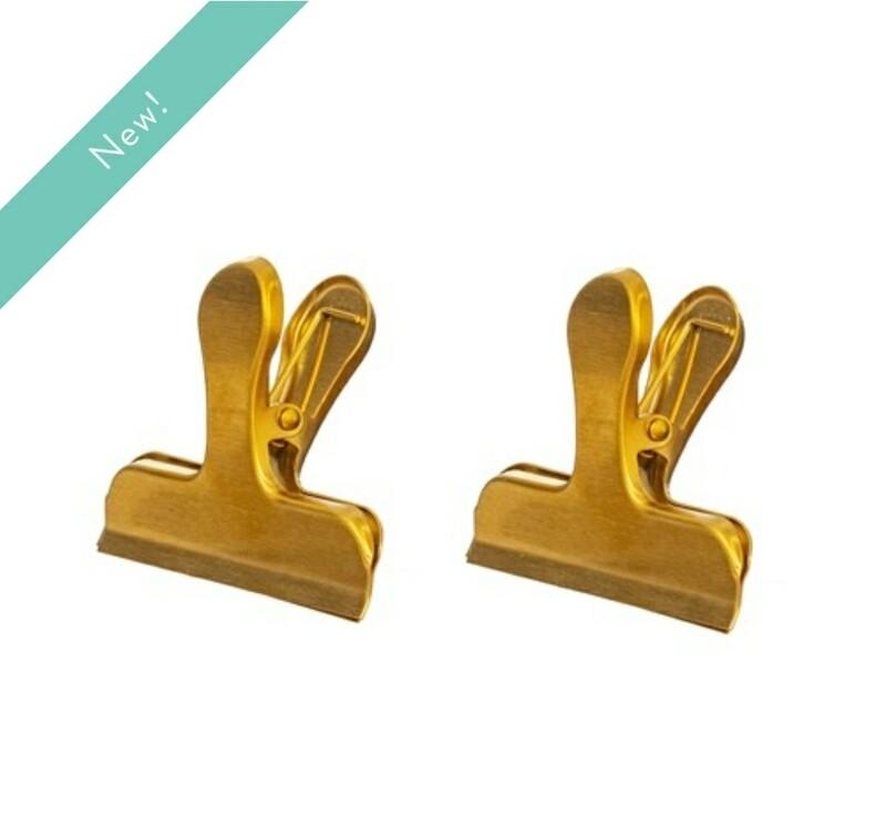 Brass Clip Set of 2