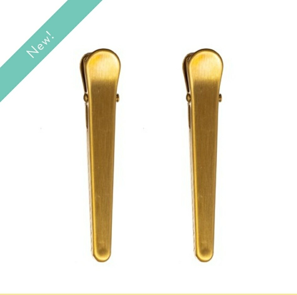 Brass Long Clips Pack of 2