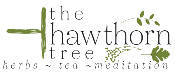 The Hawthorn Tree
