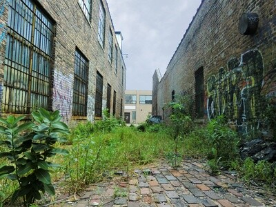 Class - Alley Herb Walk - May 22nd - 2-4pm