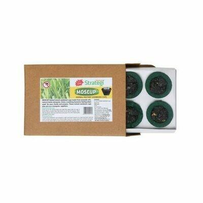Strategi Herbal Instant Sambrani Cups 6nos