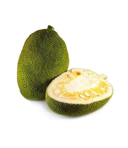 Jackfruit Idly Podi | பலாக்காய் இட்லி பொடி