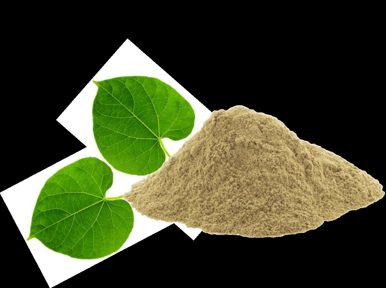 Guduchi Giloy Powder 100g (Tamil: சீந்தில் கொடி Sindhil Kodi) (Sanskrit: अमृतवल्ली Amruthvalli)