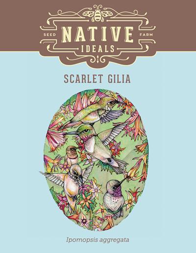 Scarlet Gilia Native Wildflower Seeds $4.50