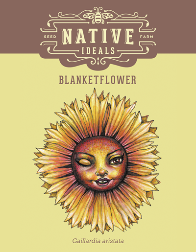 BlanketFlower Native Wildflower Seeds $4.50