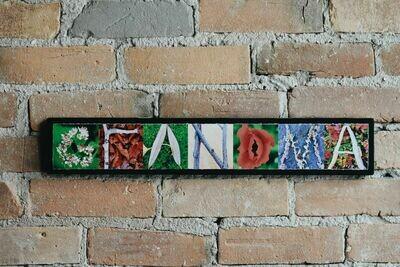 9-Grandma GMA